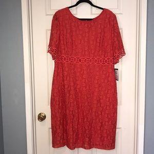 Jessica Howard NWT dress -intricate crochet detail